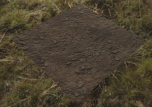 ground_01