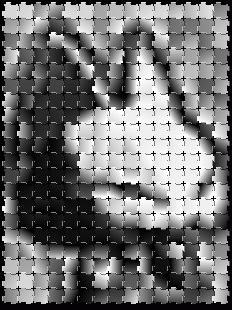 20100223_blan2.jpg