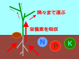 2011-06-17-4.png