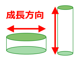 2011-06-17-7.png
