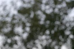 2009-07-17-bokeh04